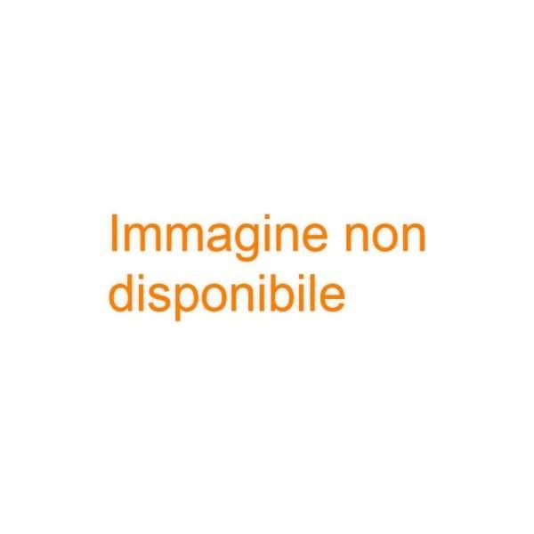 FORNO RICOT E80400V 21X15X30